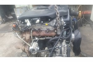iveco-daly-motor-1